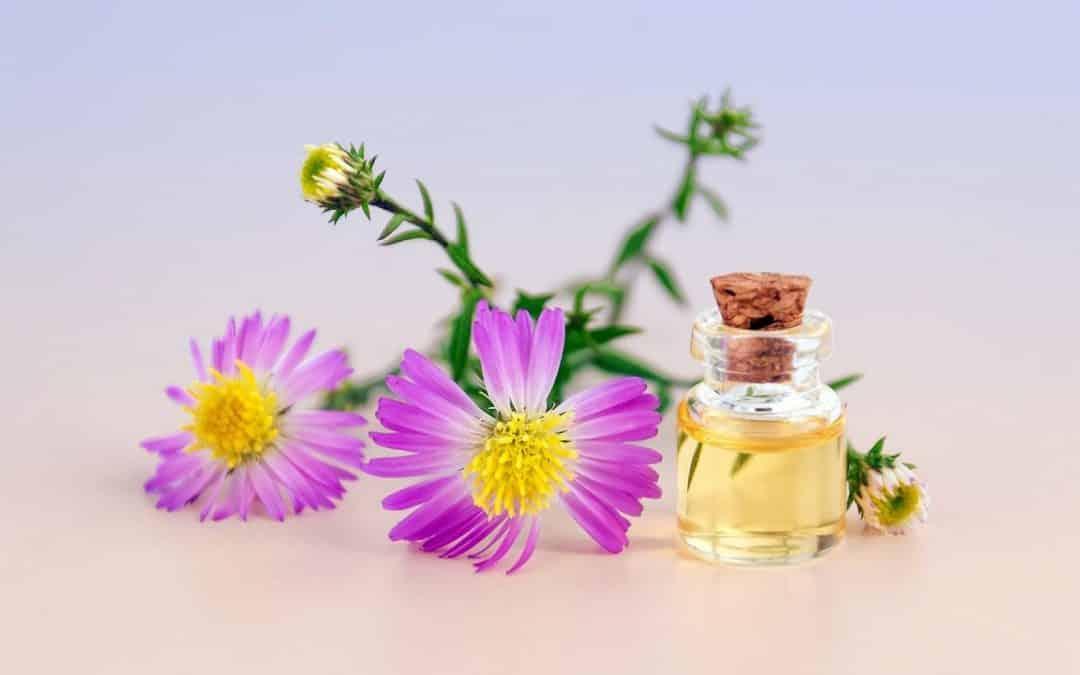Découvrez les bienfaits des cosmétiques bio pour votre peau