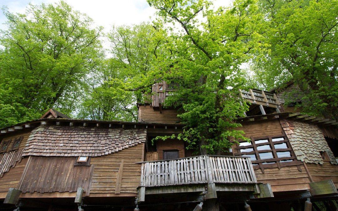 Passez une nuit inoubliable dans une maison dans les arbres